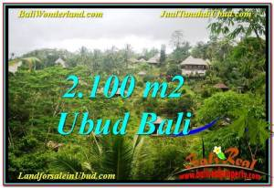 FOR SALE Exotic PROPERTY 2,100 m2 LAND IN UBUD BALI TJUB572