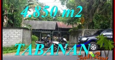 Magnificent Tabanan Bedugul 4,850 m2 LAND FOR SALE TJTB330
