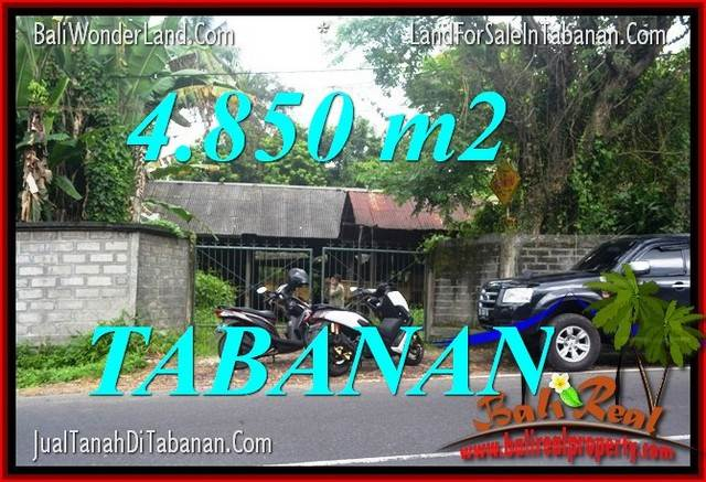 FOR SALE 4,850 m2 LAND IN TABANAN BALI TJTB330
