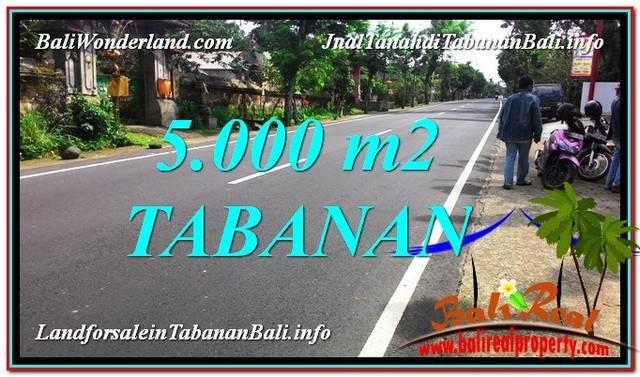 Affordable PROPERTY 5,000 m2 LAND SALE IN Badung TJTB332
