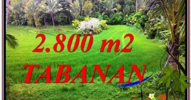 Beautiful PROPERTY LAND IN TABANAN BALI FOR SALE TJTB333