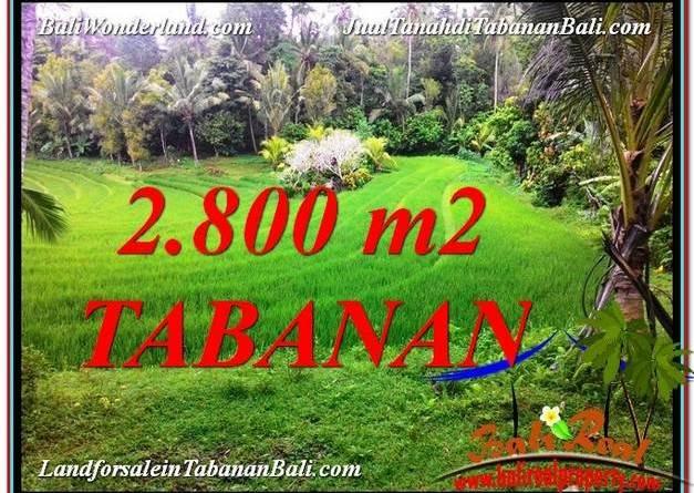 Beautiful PROPERTY LAND IN TABANAN BALI FOR SALE TJTB333