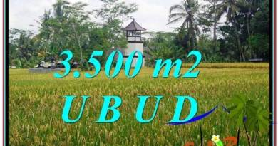 Beautiful UBUD BALI 3,500 m2 LAND FOR SALE TJUB596