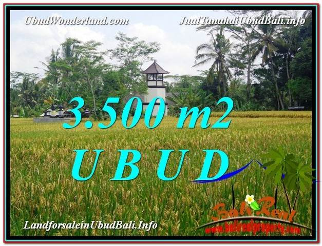 FOR SALE Affordable 3,500 m2 LAND IN UBUD TJUB596