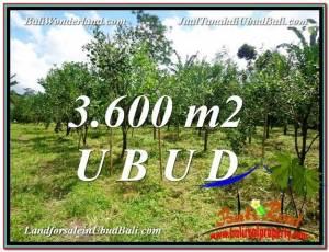 Exotic PROPERTY Ubud Tegalalang 3,600 m2 LAND FOR SALE TJUB599