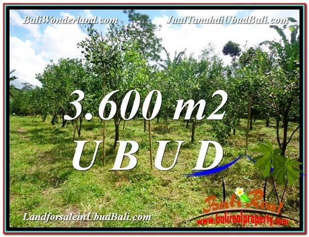 FOR SALE Magnificent 3,600 m2 LAND IN UBUD BALI TJUB599