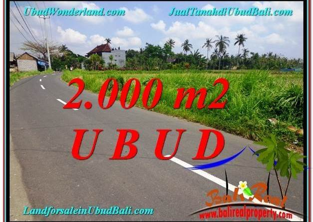 Magnificent LAND SALE IN Sentral Ubud BALI TJUB580