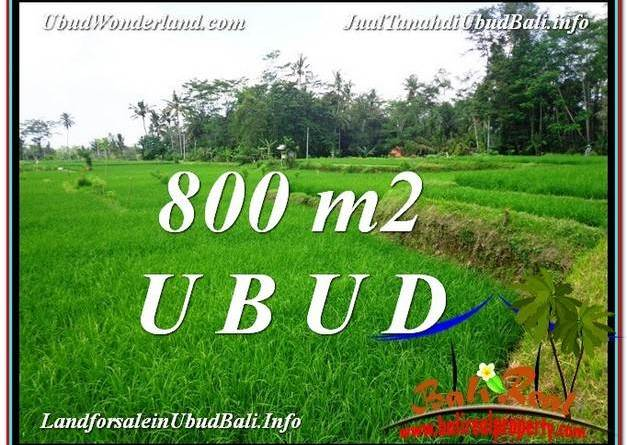 Exotic PROPERTY LAND SALE IN UBUD TJUB581