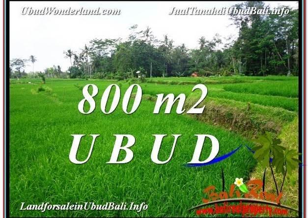 Exotic PROPERTY LAND SALE IN UBUD TJUB581