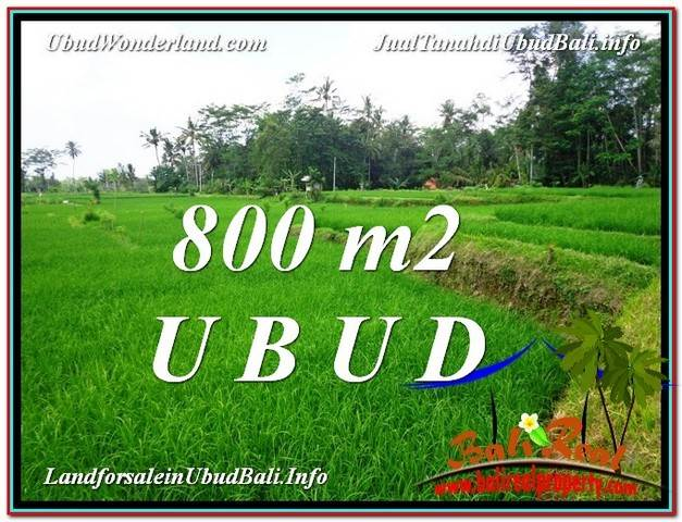 Magnificent LAND FOR SALE IN UBUD TJUB581