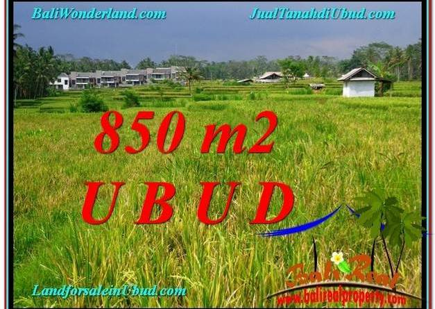 FOR SALE Magnificent PROPERTY LAND IN UBUD TJUB583