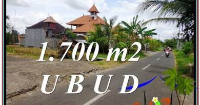 1,700 m2 LAND SALE IN UBUD TJUB588