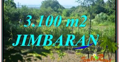 Exotic JIMBARAN 3,100 m2 LAND FOR SALE TJJI113