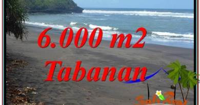 Exotic PROPERTY 6,000 m2 LAND FOR SALE IN Tabanan Selemadeg BALI TJTB345