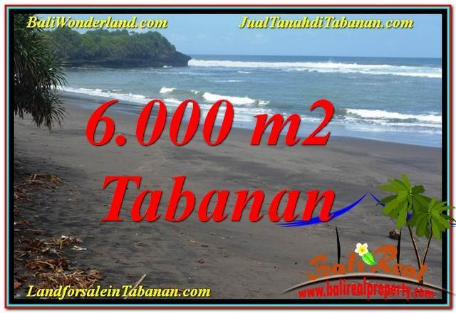 Magnificent Tabanan Selemadeg 6,000 m2 LAND FOR SALE TJTB345