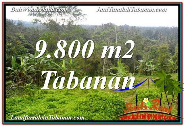 Exotic PROPERTY 9,800 m2 LAND FOR SALE IN Tabanan Selemadeg BALI TJTB350