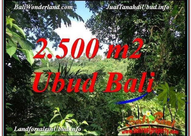 2,500 m2 LAND FOR SALE IN UBUD BALI TJUB605