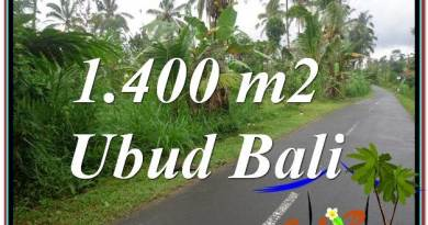 Magnificent 1,400 m2 LAND FOR SALE IN UBUD BALI TJUB612
