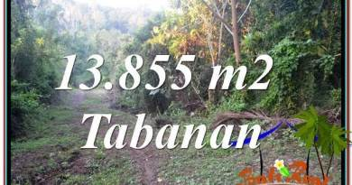 Magnificent Tabanan Selemadeg 13,855 m2 LAND FOR SALE TJTB335