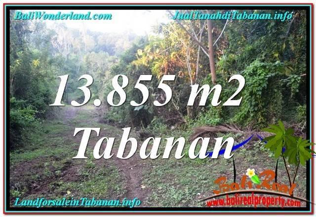 FOR SALE 13,855 m2 LAND IN TABANAN BALI TJTB335