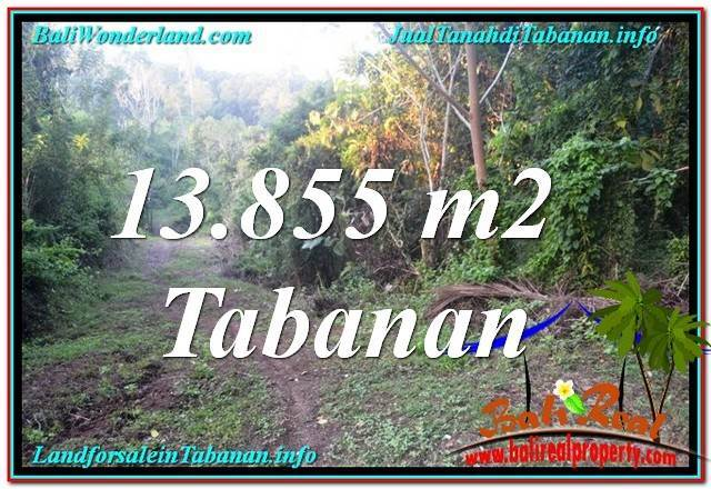 FOR SALE 13,855 m2 LAND IN TABANAN BALI TJTB335