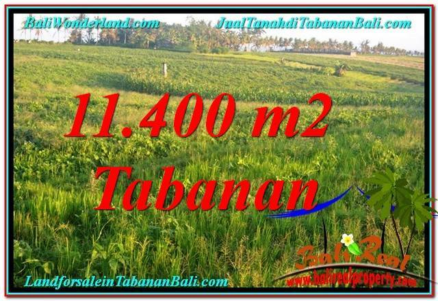 FOR SALE Beautiful 11,400 m2 LAND IN Tabanan Selemadeg TJTB339
