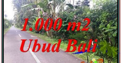 Exotic PROPERTY LAND FOR SALE IN UBUD TJUB614
