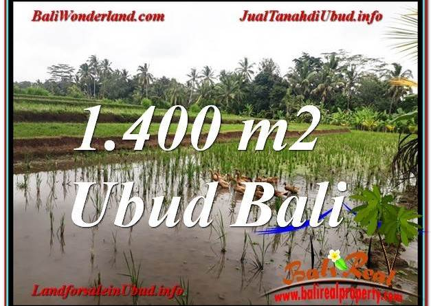 Affordable PROPERTY 1,400 m2 LAND FOR SALE IN Ubud Payangan TJUB615
