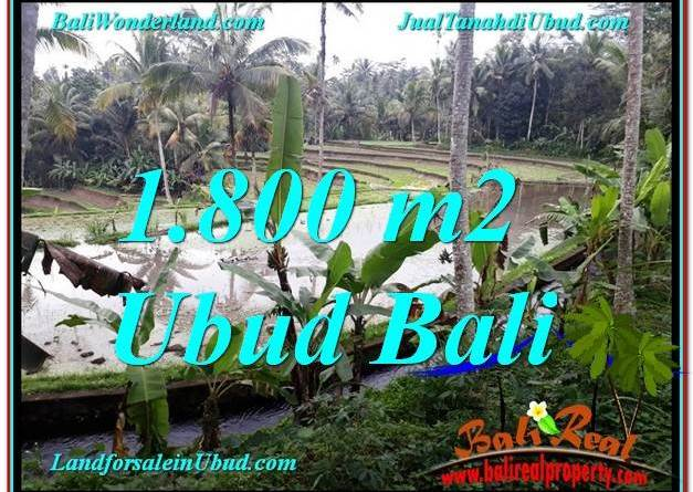 Magnificent PROPERTY LAND IN UBUD FOR SALE TJUB616