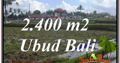 FOR SALE Magnificent PROPERTY 2,400 m2 LAND IN UBUD BALI TJUB620