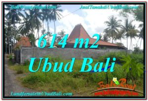 FOR SALE Affordable 614 m2 LAND IN UBUD TJUB622
