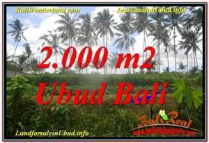 FOR SALE Affordable LAND IN Ubud Pejeng BALI TJUB625