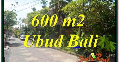 Exotic 600 m2 LAND FOR SALE IN UBUD BALI TJUB644