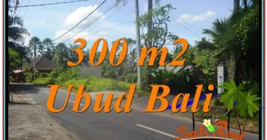 Magnificent 300 m2 LAND IN UBUD BALI FOR SALE TJUB646