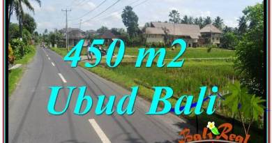 Beautiful 450 m2 LAND FOR SALE IN Sentral / Ubud Center TJUB647
