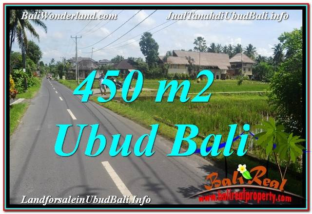 Affordable PROPERTY 450 m2 LAND SALE IN Sentral / Ubud Center BALI TJUB647