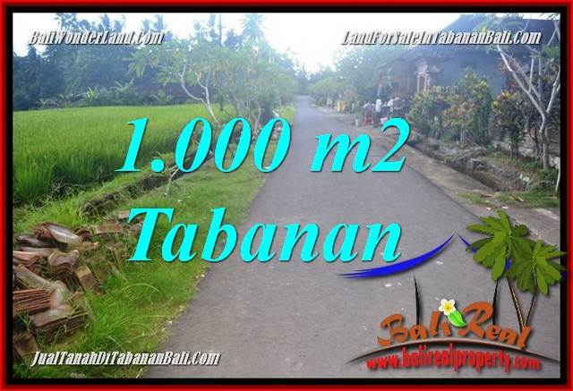 Beautiful 1,000 m2 LAND IN Tabanan Selemadeg Timur FOR SALE TJTB363