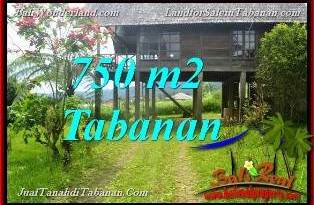 FOR SALE Exotic PROPERTY 750 m2 LAND IN Tabanan Bedugul BALI TJTB370