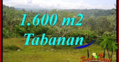 Beautiful PROPERTY 1,600 m2 LAND FOR SALE IN TABANAN Selemadeg BALI TJTB378