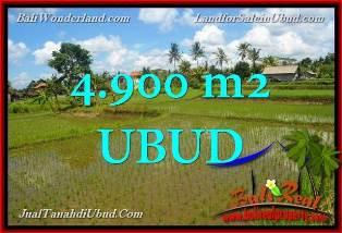FOR SALE Magnificent 4,900 m2 LAND IN UBUD PEJENG BALI TJUB652