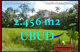 Magnificent PROPERTY 2,456 m2 LAND SALE IN UBUD BALI TJUB654