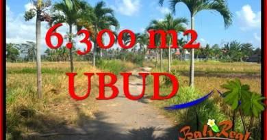 Beautiful 6,300 m2 LAND IN UBUD BALI FOR SALE TJUB662