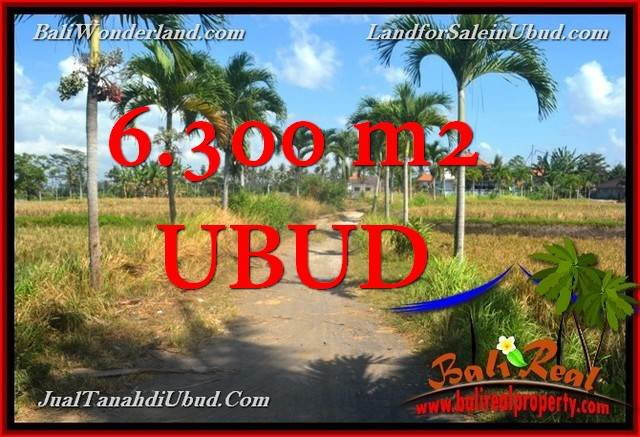 Beautiful 6,300 m2 LAND IN UBUD BALI FOR SALE TJUB662