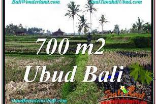 Exotic PROPERTY 700 m2 LAND IN SENTRAL UBUD FOR SALE TJUB666