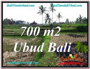 Exotic PROPERTY 700 m2 LAND IN SENTRAL UBUD FOR SALE TJUB666
