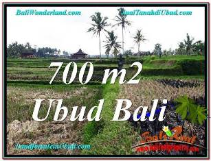 Magnificent 700 m2 LAND SALE IN UBUD BALI TJUB666