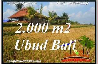 UBUD BALI 2,000 m2 LAND FOR SALE TJUB669
