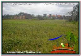 Exotic PROPERTY 2,994 m2 LAND IN SENTRAL UBUD BALI FOR SALE TJUB672