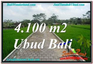 Beautiful 4,100 m2 PROPERTY LAND IN SENTRAL UBUD BALI FOR SALE TJUB676