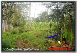 Magnificent 12,100 m2 LAND IN UBUD PAYANGAN BALI FOR SALE TJUB677